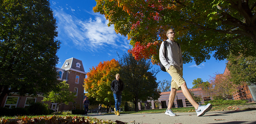 Student walks past fall-colored tree