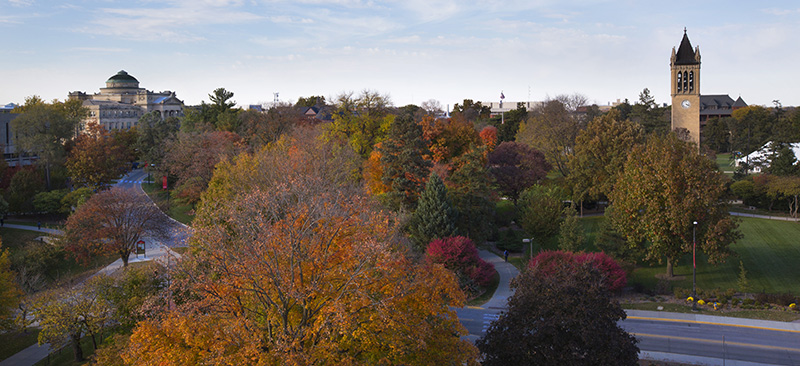 Birds-eye view of fall-colored treetops and campanile on central campus