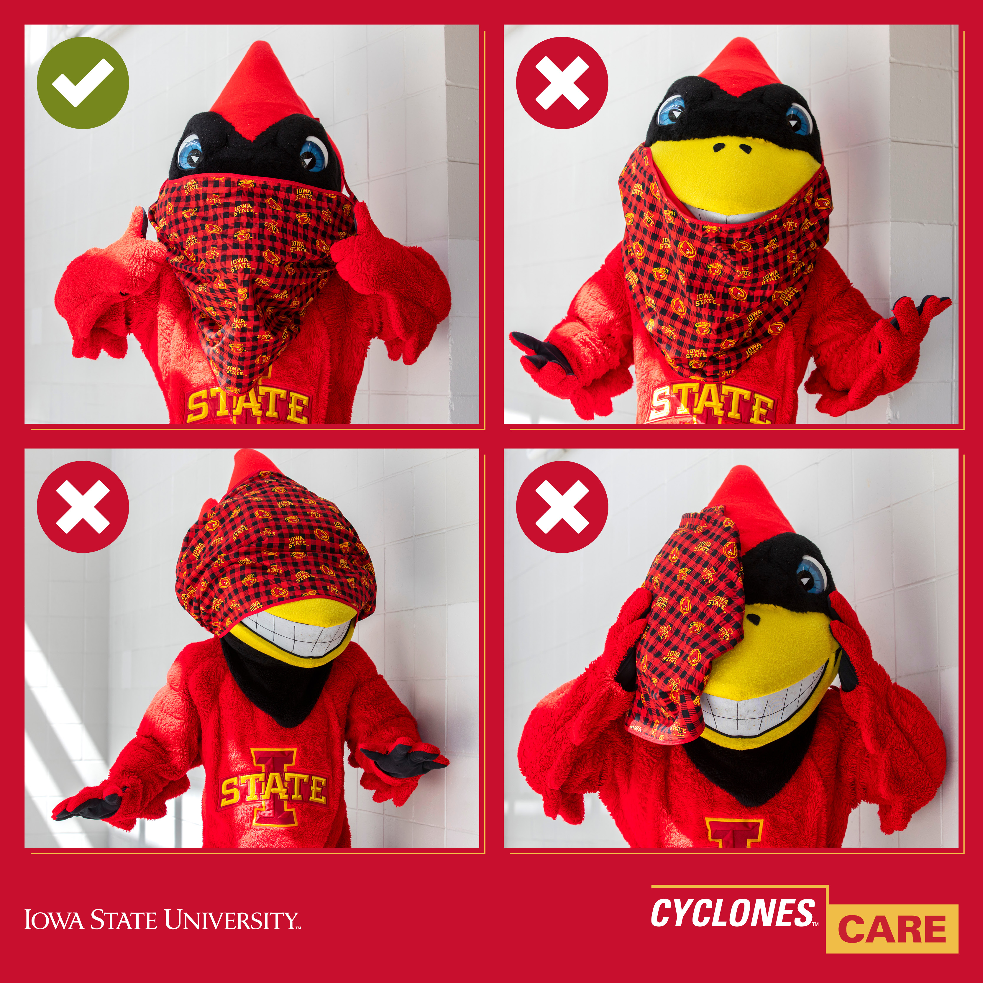 4-image graphic of Cy mascot showing right and wrong ways to wear a mask