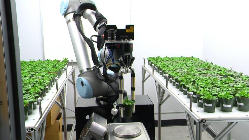 Robot maintaining plant research without human interaction